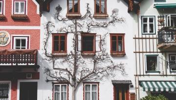 exonérations de la taxe foncière sur l'habitation principale